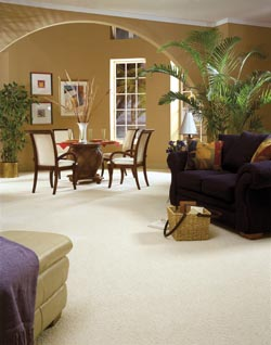 carpet flooring in Orlando FL